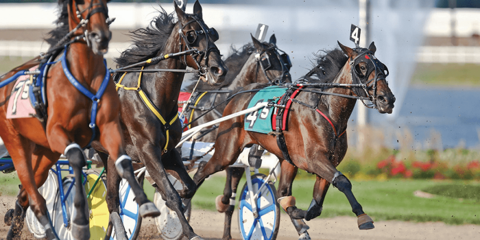 Easy Point System For Horse Racing Wagering